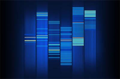 ideonexus' DNA