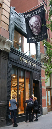 Evolution Store in Soho