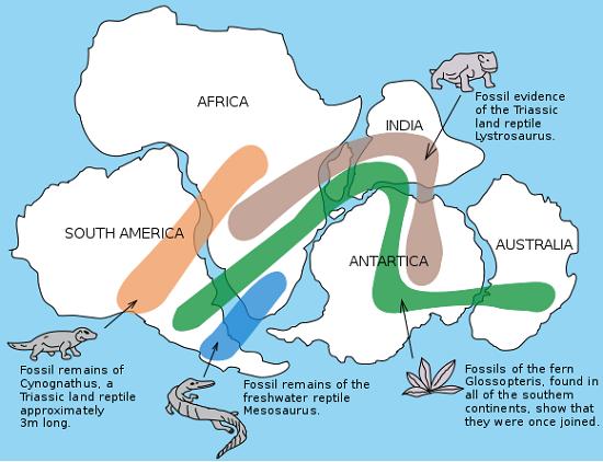 Snider-Pellegrini Wegener fossil map