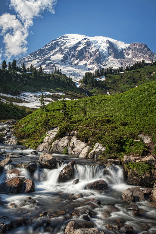 Mount Ranier Panorama